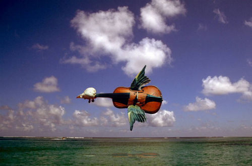Celloflyingcello