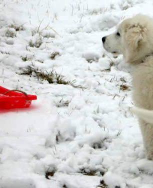 KSO,Snow 072