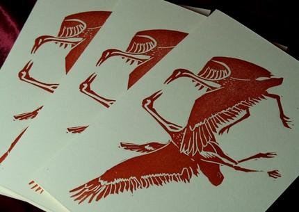 Crane Cards 3