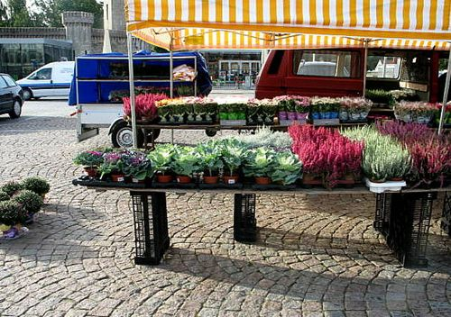 Karlskrona and Visby day 1 083