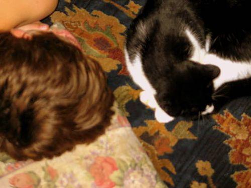 Katten stuga, and play_2240