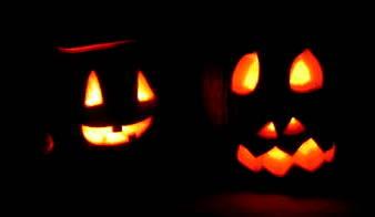 Pumpkins_2357