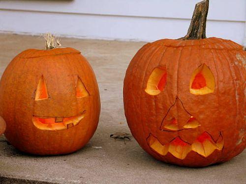 Pumpkins_2350