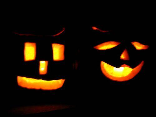 Pumpkins_2360