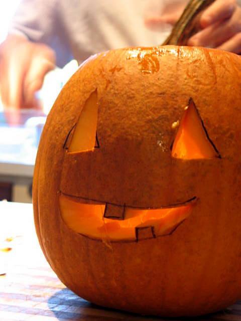Pumpkins_2331