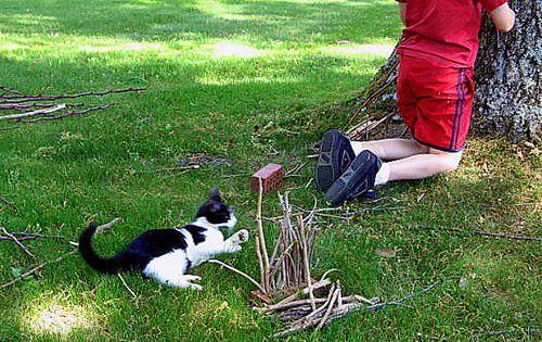 Savannah,gardening,playing,treasures 144