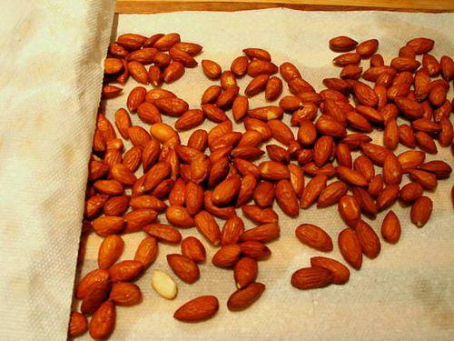 Nuts_3724