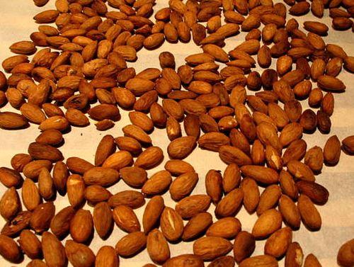 Nuts_3729