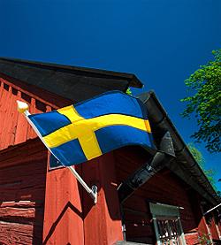 Swedish Flag 4