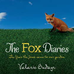 Fox Diaries flat cover