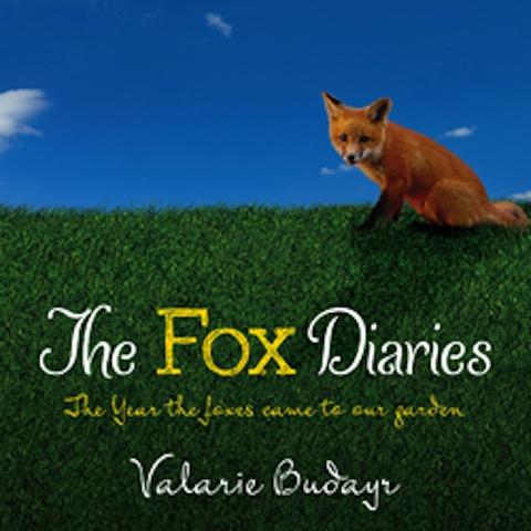 Fox Diaries flat cover